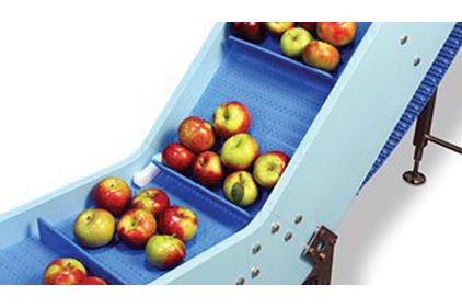 gıda konveyörü 2